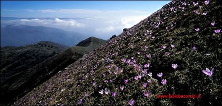 Monte Piglione